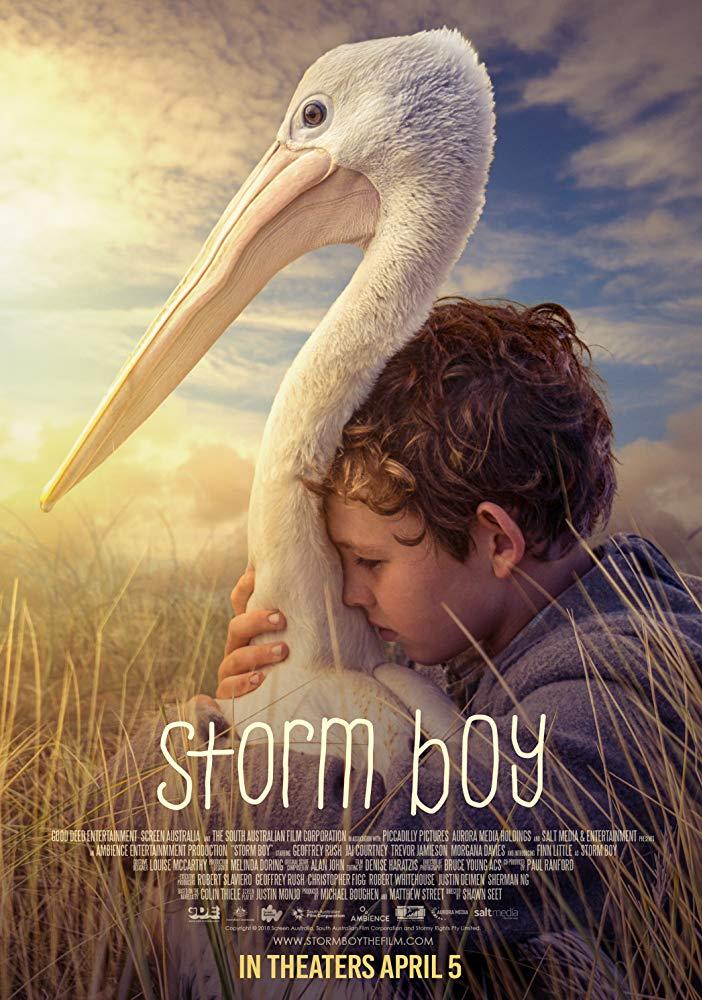 Storm Boy 2019 HDRip XviD AC3-EVO