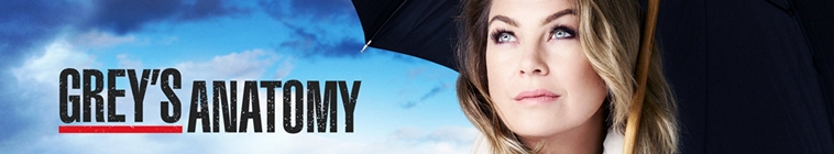 Greys Anatomy S15E23 720p HDTV x264-KILLERS