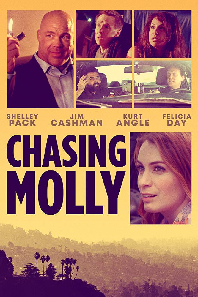 Chasing Molly 2019 720p WEBRip 800MB x264-GalaxyRG