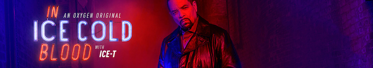 In Ice Cold Blood S02E13 The Vanishing Cop 480p x264-mSD
