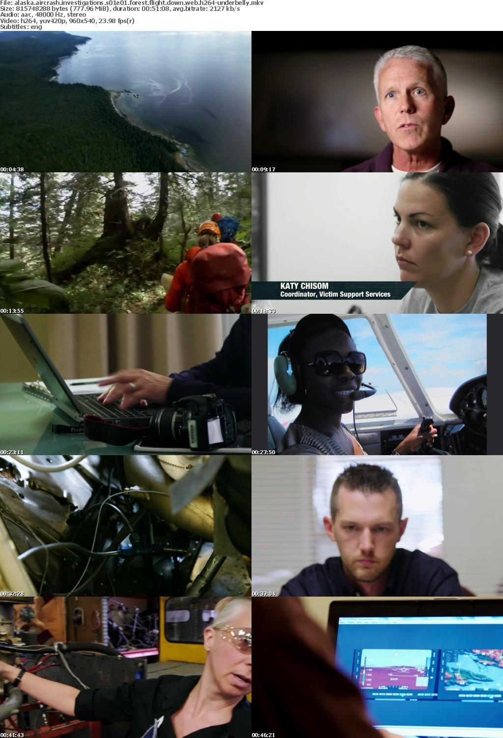 Alaska Aircrash Investigations S01E01 Forest Flight Down WEB H264-UNDERBELLY