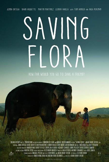 Saving Flora 2018 HDRip AC3 x264-CMRG