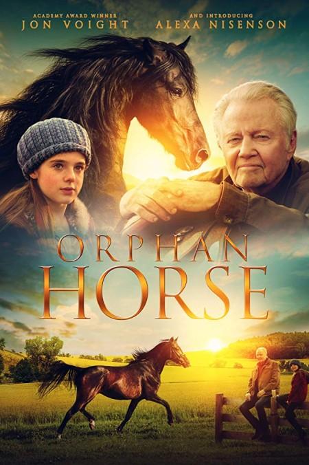 Orphan Horse (2018) BDRip x264-ARiES