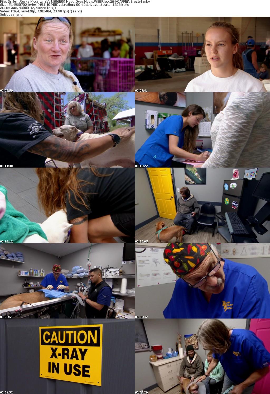 Dr Jeff Rocky Mountain Vet S06E09 Head Over Heels WEBRip x264 CAFFEiNE