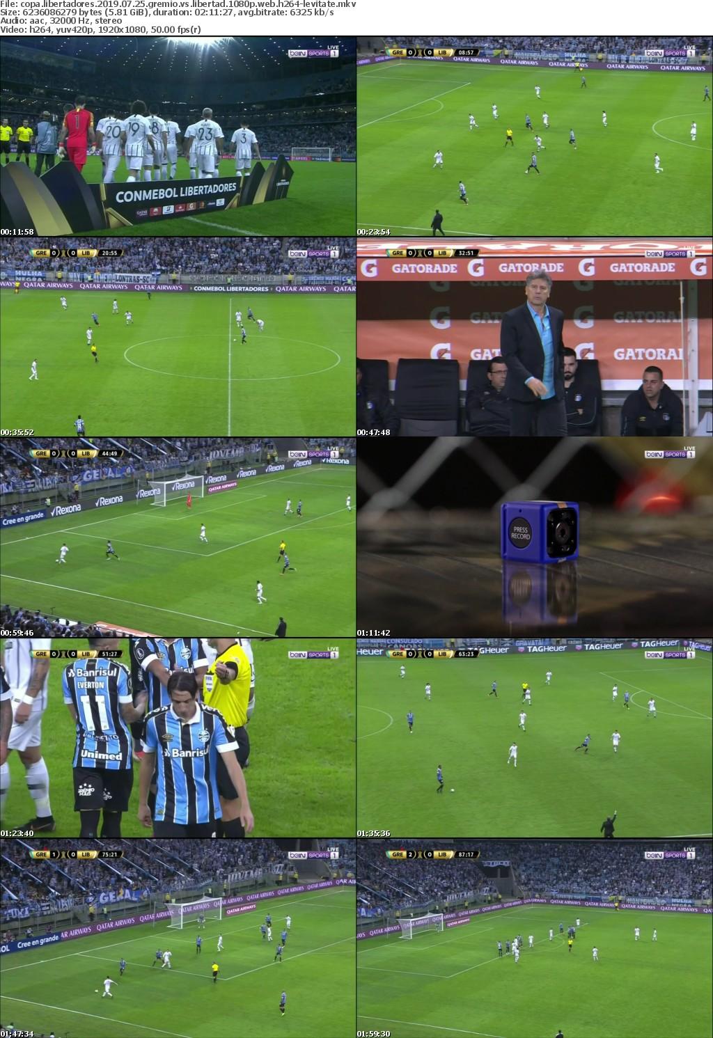Copa Libertadores 2019 07 25 Gremio vs Libertad 1080p WEB H264-LEViTATE