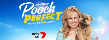Pooch Perfect S01E03 720p HDTV x264-CBFM
