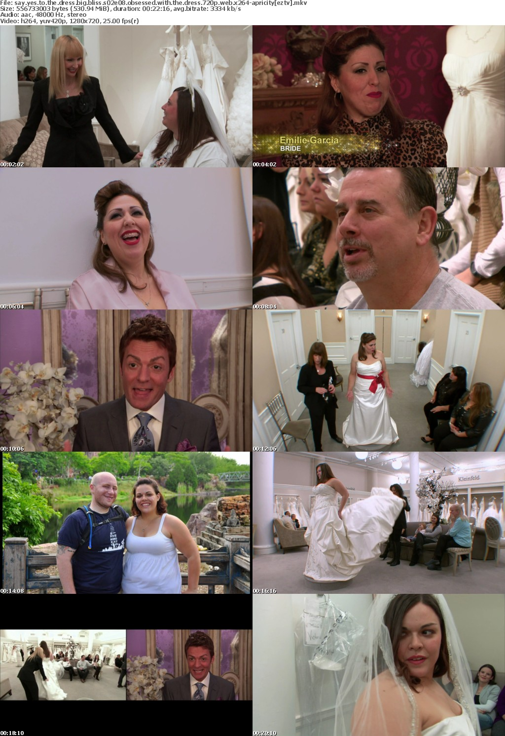 Say Yes to the Dress Big Bliss S02E08 Obsessed with the Dress 720p WEB x264-APRiCiTY