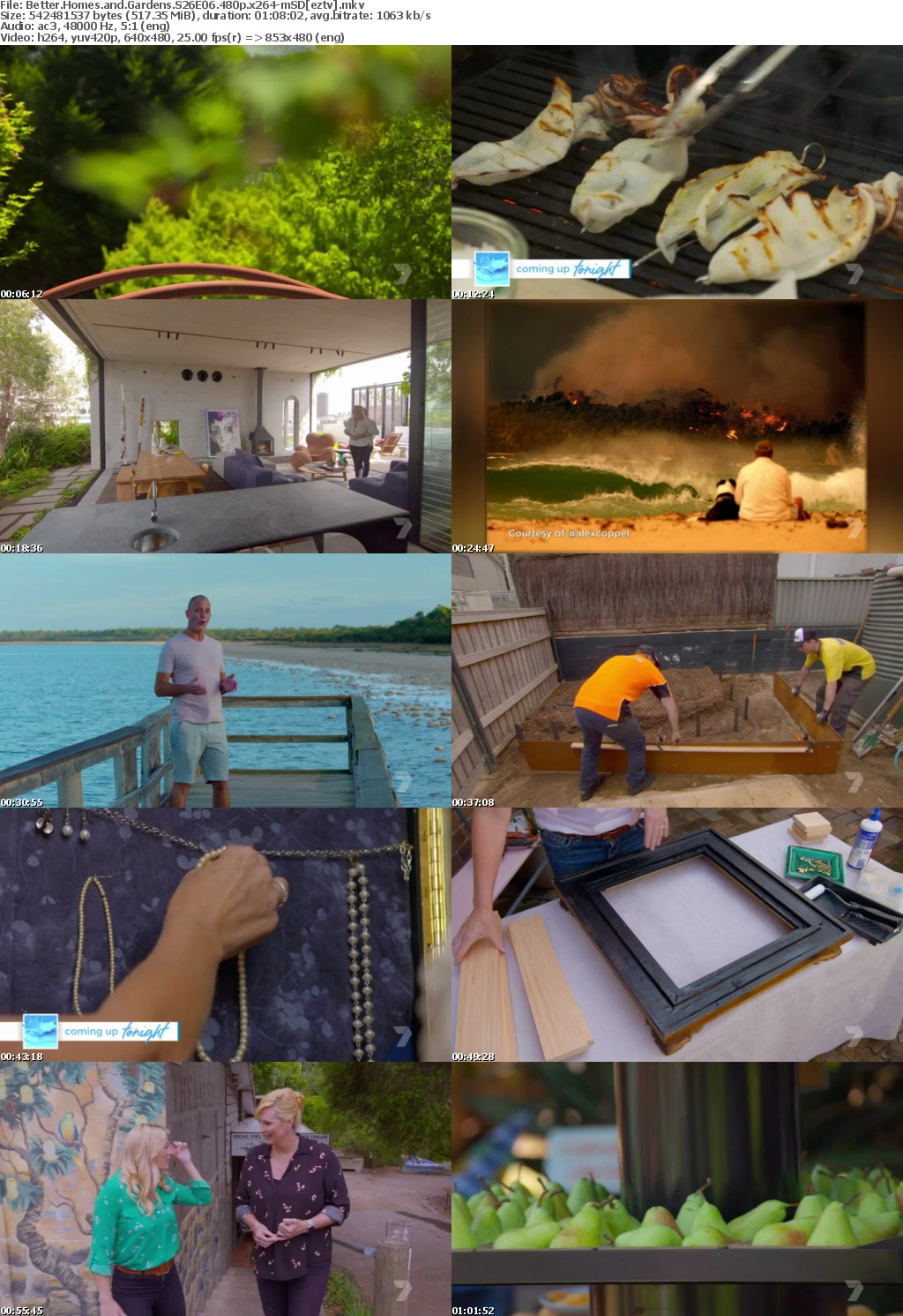 Better Homes and Gardens S26E06 480p x264-mSD