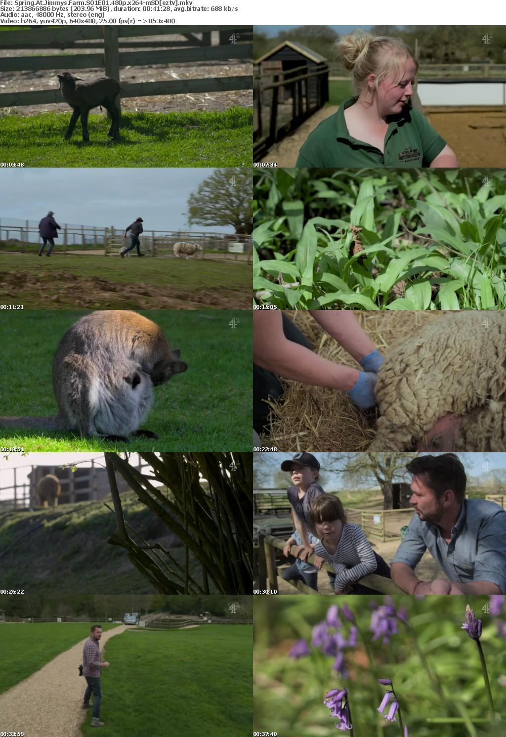 Spring At Jimmys Farm S01E01 480p x264-mSD