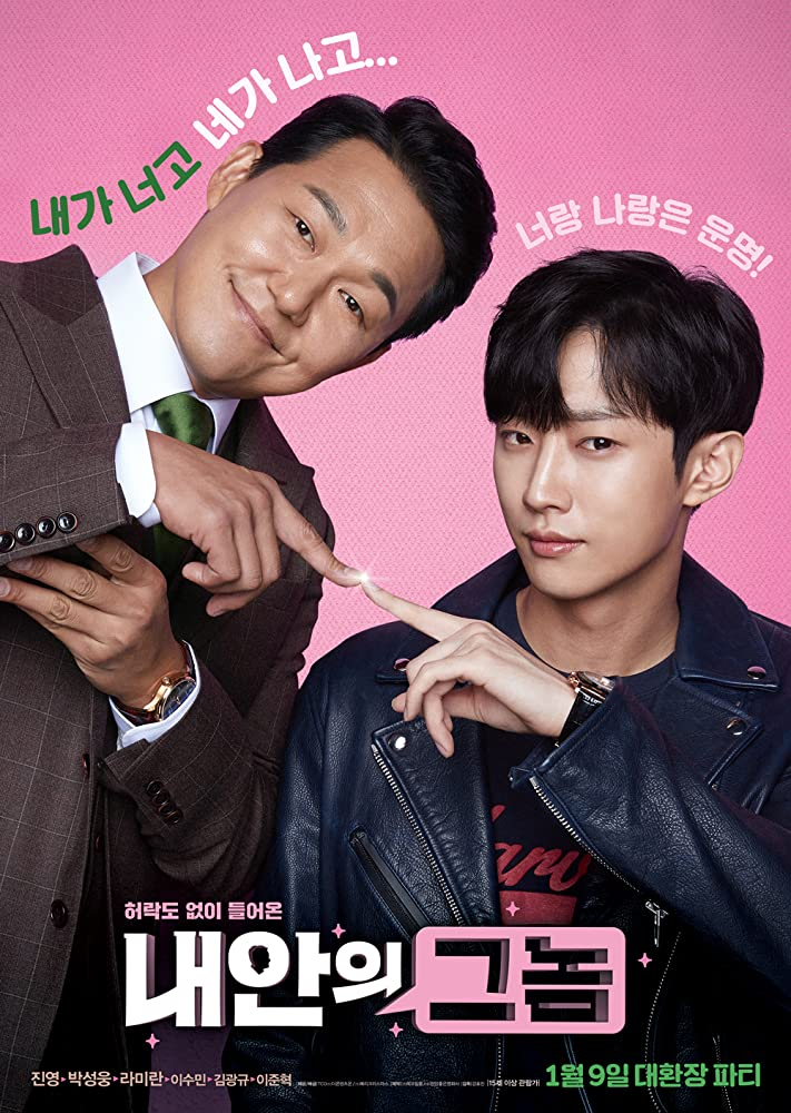 The Dude In Me 2019 KOREAN WEBRip XviD MP3-VXT