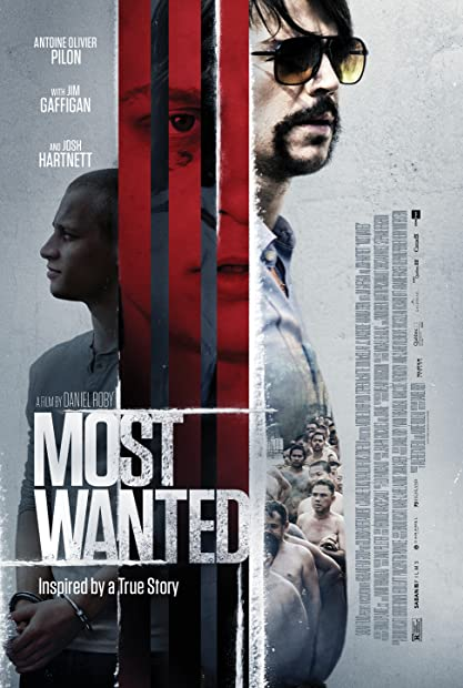 Most Wanted 2020 1080p WEB-DL H264 AC3-EVO