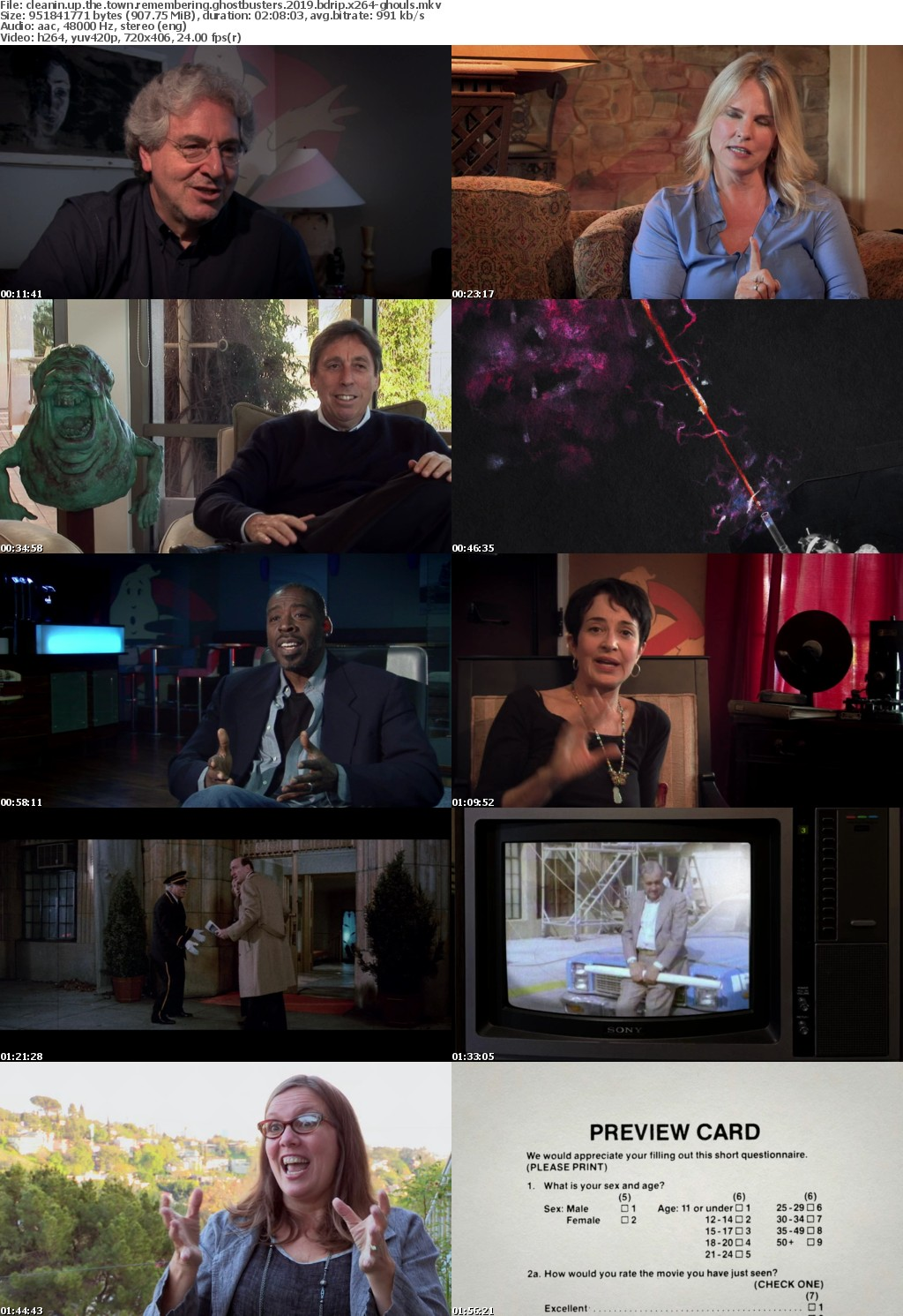 Cleanin Up the Town Remembering Ghostbusters 2019 BDRip x264-GHOULS