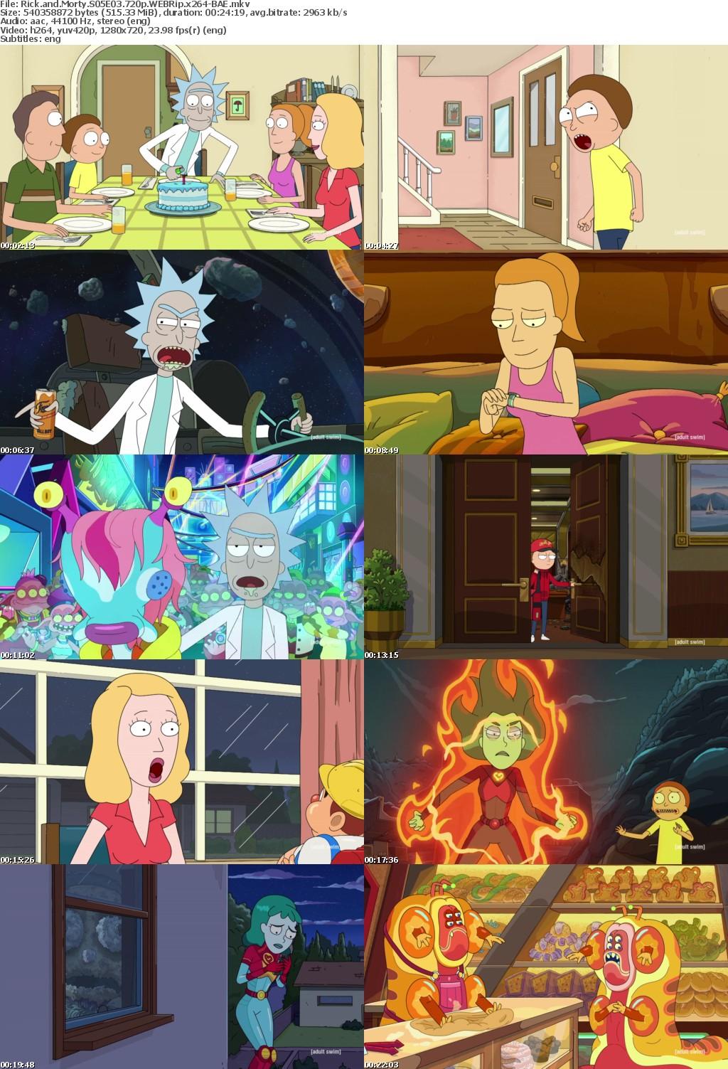Rick and Morty S05E03 720p WEBRip x264-BAE