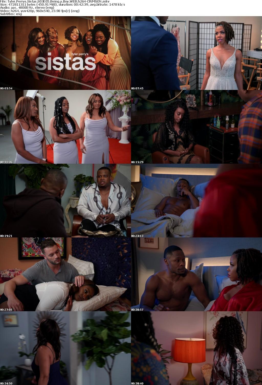 Tyler Perrys Sistas S03E05 Being a Boy WEB h264-CRiMSON